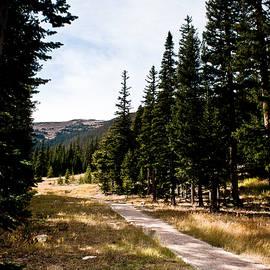 Nature Walk by Robert J Caputo