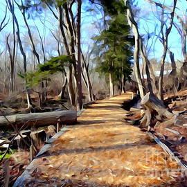 Ed Weidman - Nature Walkway