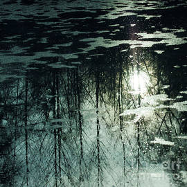 Natures Reflections on Water 001 by Ron Evans