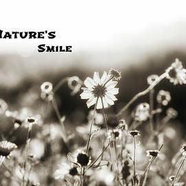 Joseph S Giacalone - Nature