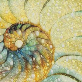 Jack Zulli - Nautilus