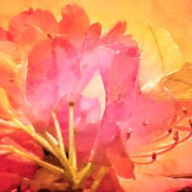 Nectar by Susan Maxwell Schmidt