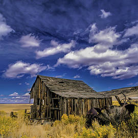 Ray G Foster - Nevada Desert Cabin