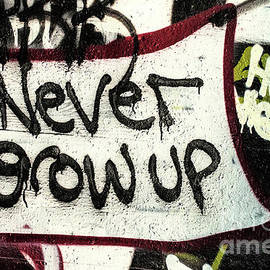 Never Grow Up by Terry Rowe