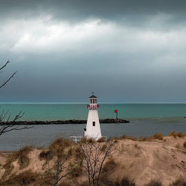 David T Wilkinson - New Buffalo Lighthouse