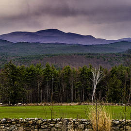 New England Spring In Oil by Mark Myhaver