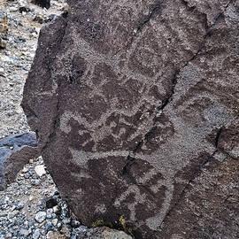 New Mexico Petroglyphs by Kyle Hanson