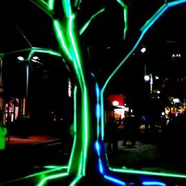 Michael Hoard - New Orleans Neon Tree Abstract Downtown