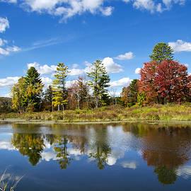 Christina Rollo - New York Autumn Landscape