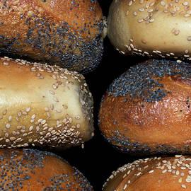 New York Bagels by Sandi Kroll