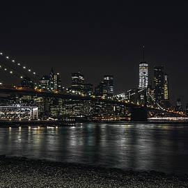 New York Skyline by Erika Fawcett