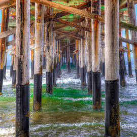 Jim Carrell - Newport Beach Pier - Summertime