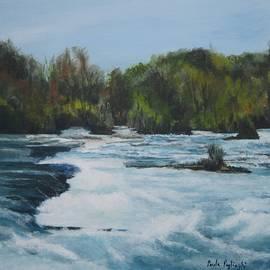 Paula Pagliughi - Niagra Rapids