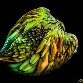 Nicobar Abstract by Rikk Flohr