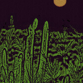 Night Cactus in the Caribbean by Claudia O'Brien