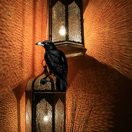 Night Crow Perched On The Lantern by Sandra McGinley
