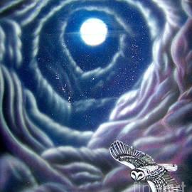 Night Flight Owl by Michaeline McDonald