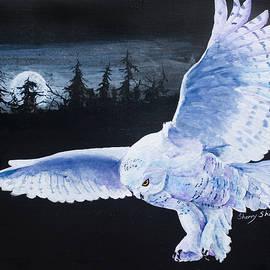 Night Flight by Sherry Shipley