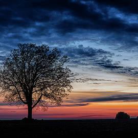 Nightfall by CA Johnson
