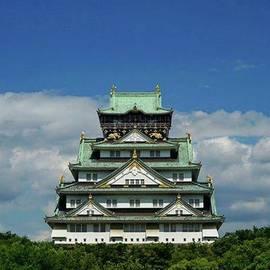 GANJI SAKAMOTO - . 大阪城!どーん! . #japan