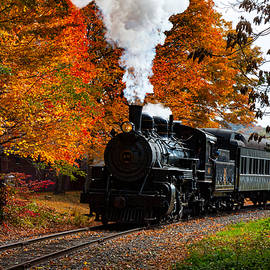 Jeff Folger - No. 40 passing the fall colors