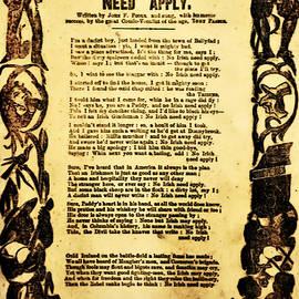 Bill Cannon - No Irish Need Apply