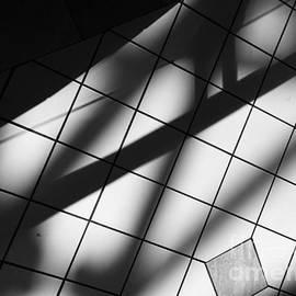 Noir by Jenny Revitz Soper