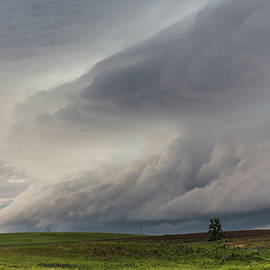 Lauri Novak - North Dakota Storm