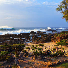 North Shore Evening by Kevin Smith