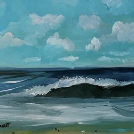 Christina Schott - Northeast Atlantic View
