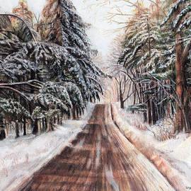 Shana Rowe Jackson - Northeast Winter