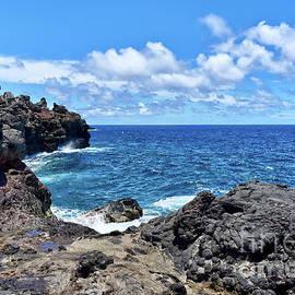 Eddie Yerkish - Northern Maui Rocky Coastline