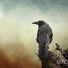 Eva Lechner - Northwestern Crow