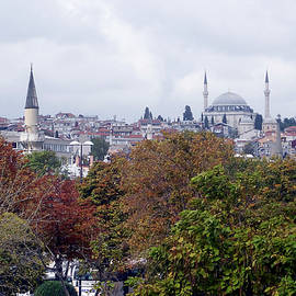 Inna Nedzelskaia - Nostalgia of the autumn in Istanbul