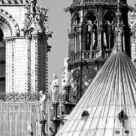Alex Cassels - Notre Dame Roofscape