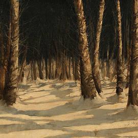 Guido Borelli - notte di neve