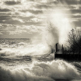 James Meyer - November Gales BW