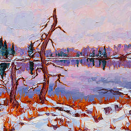 Rob MacArthur - November snow, Winnipeg River