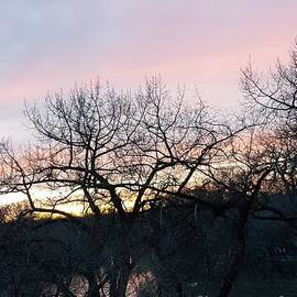 Manuel Matas - November sunset