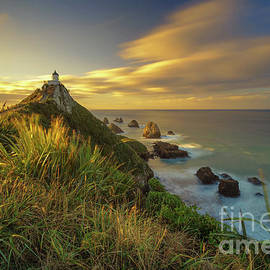 Nugget Point Lighthouse by Kamrul Arifin Mansor