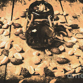 Nuts about vintage still life art - Jorgo Photography - Wall Art Gallery