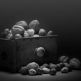 Tom Mc Nemar - Nuts in Black and White