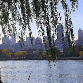 Dora Sofia Caputo Photographic Design and Fine Art - NYC Skyline- A View from Socrates  Sculpture Park