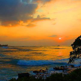 Michael Rucker - Oahu Sunset Hawaii