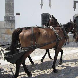 Obidos Horses Portugal by John Shiron