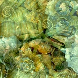 Ocean Gems Underwater by Lynda Lehmann
