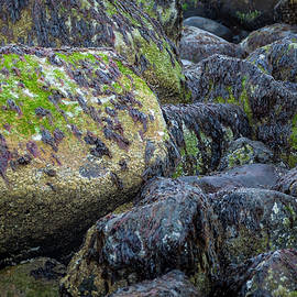 Ocean Rocks by Rick Mosher