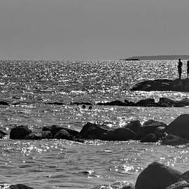 Ocean Silhouettes by Lyuba Filatova