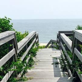 Marian Palucci-Lonzetta - Ocean Walk