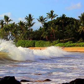 Michael Rucker - Ocean Waves of Maui